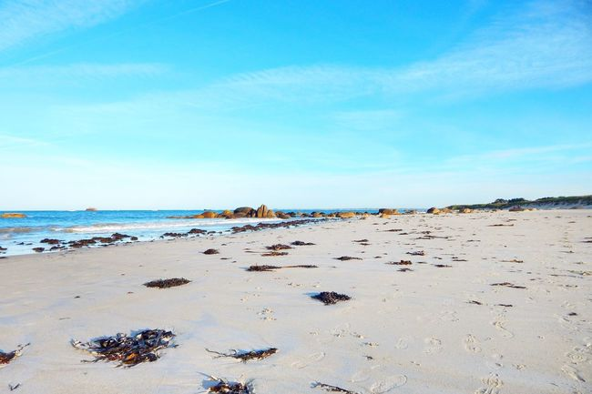 Walk Blue Sky Nofilter Bretagne Nature Quiet Moments France The Great Outdoors - 2016 EyeEm Awards Bretagnetourisme Ocean Nature Photography Colorful Landscapes With WhiteWall French Brittany Water Beautiful Beach