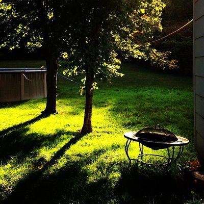 Morning Light. #miltonvt #vt Bestoftheday Instagood Webstagram Morning Vt Light Vt_scenery Sunrise Vermont_scenery Goodmorning 802 Green Miltonvt Iphoneonly Igharjit Photooftheday Vermontbyvermonters Picoftheday Vt_scene Fresh Vermont_scene Vermont Igvermont Igvt Vt_landscape Instamood Instagramjit