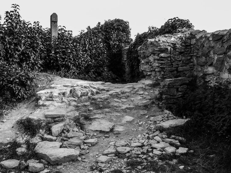 Black And White Black And White Collection  Black And White Photography Day Deterioration Footpath Memories Nature No People Non-urban Scene Old Outdoors Ruin Ruined Ruins Scenics Solitude The Way Forward Tranquil Scene Tranquility