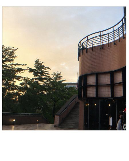 National Taiwan University Afternoon Night Fall National Taiwan University Musicbar Coffee Shop Built Structure Architecture Tree Building Exterior Auto Post Production Filter Sky Transfer Print Day Building