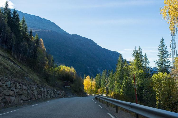 Gaustadtoppen Autumn Autumn Colors Nature Norway October Rjukan Road Trees Blue Sky Gaustablikk Gaustadtoppen Landscape Mountain Telemark The Way Forward