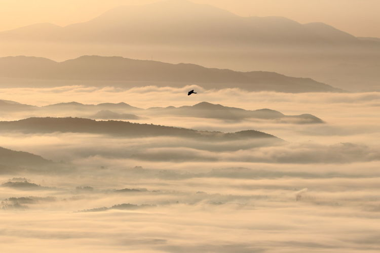 Fogs filled between the mountain ranges create a mysterious landscape.
