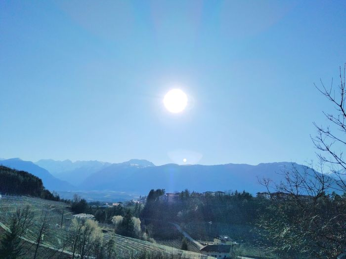 Path of stones Sunnyday Path Pathway Trentino Alto Adige Montains    Landscape Pictures Light Cold Temperature Bluesky Emptysky Sun Trekking Tree Sky Cloud - Sky
