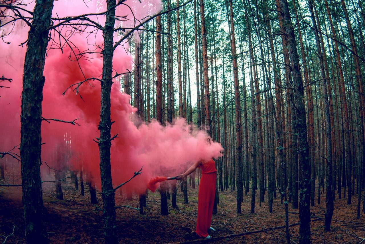 Woman holding distress flare amidst trees in forest