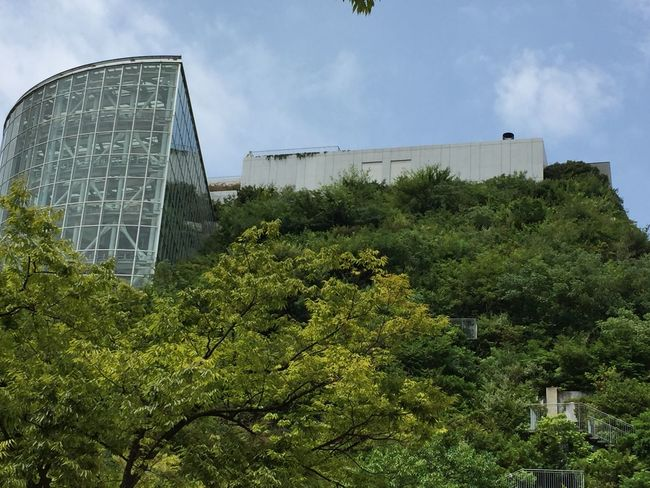Architecture Blue Building Building Exterior Built Structure Cloud Cloud - Sky Cloudy Day Exterior Green Green Color Growth Low Angle View Lush Foliage Modern Nature No People Outdoors Plant Sky Tranquility Tree ACROSS福岡