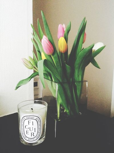 Tulips Easter Happy Easter Candle Diptyque Figuier Home Flowers