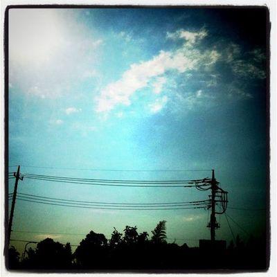 celebrate the sky