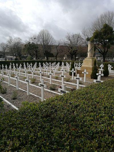 Cemetery Cultures Grave History Memorial Outdoors Sky Tombstone War Memorial
