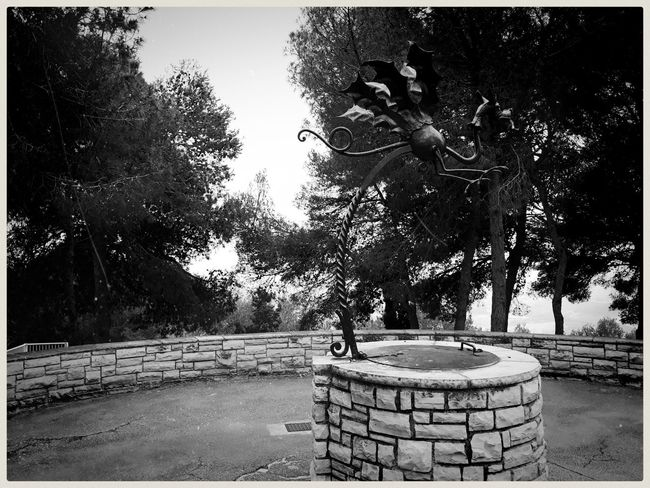 Chasing the iron dragon. Mobilephotography Samsungphotography Ace5 Kultcamera Blackandwhite Monochrome Monochrome World Abandoned Light And Shadow Ironwork  Dragon Well