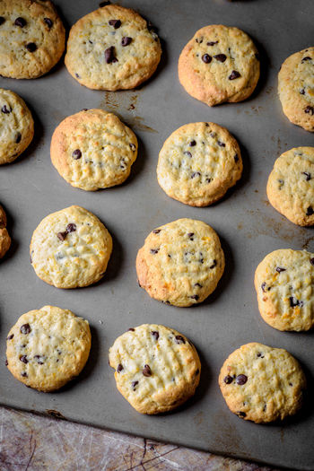 Breakfast Chocolate Chocolates Cookies Cooking Food And Drink Home Morning Break Close-up Colazione Cookie Day Daylight Food Food And Drink Foodphotography Freshness Indoors  Marmelade Milk No People Ready-to-eat Sweet Food