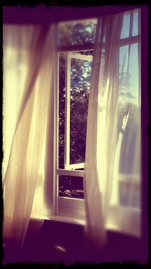 In The Breeze Lace Curtain Blowing In The Wind...