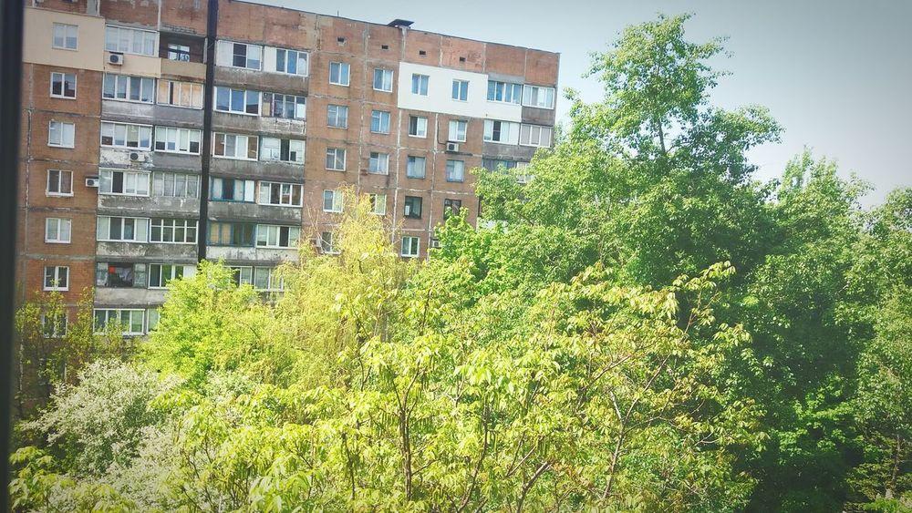 Day City Природа город природу не остоновишь