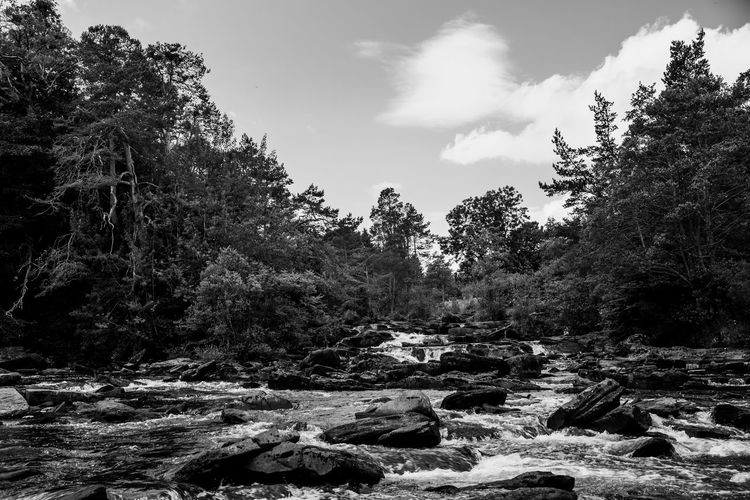 Lomography Neptune Convertible Art Lens System Black And White Blackandwhite Tree Plant Nature Sky Forest Land Tranquility No People Beauty In Nature Growth Scenics - Nature Day Tranquil Scene Non-urban Scene Outdoors Cloud - Sky Water Environment Rock Solid Flowing Water Flowing