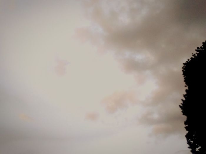 grey clouds in the sky Background Backgrounds Grey Clouds Grey Cloud Grey Background Greysky Grey Clouds Backgrounds Sunset Sky Cloud - Sky Close-up