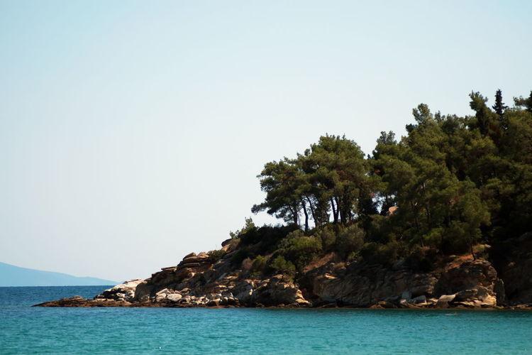 Sky Sea Tree