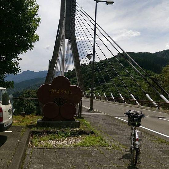 唄げんか大橋✨ 道の駅うめ(宇目)。 K-POPのKARAのsummer loveが流れてる🎵(笑) 唄げんか大橋 大分 自転車 チャリ 旅