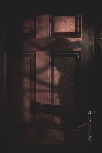 The Shadow Boy Shadow Brown Door Dark Door Day Home Interior Indoors  Man Shadow Man Silhuette No People Shadow Silhouette
