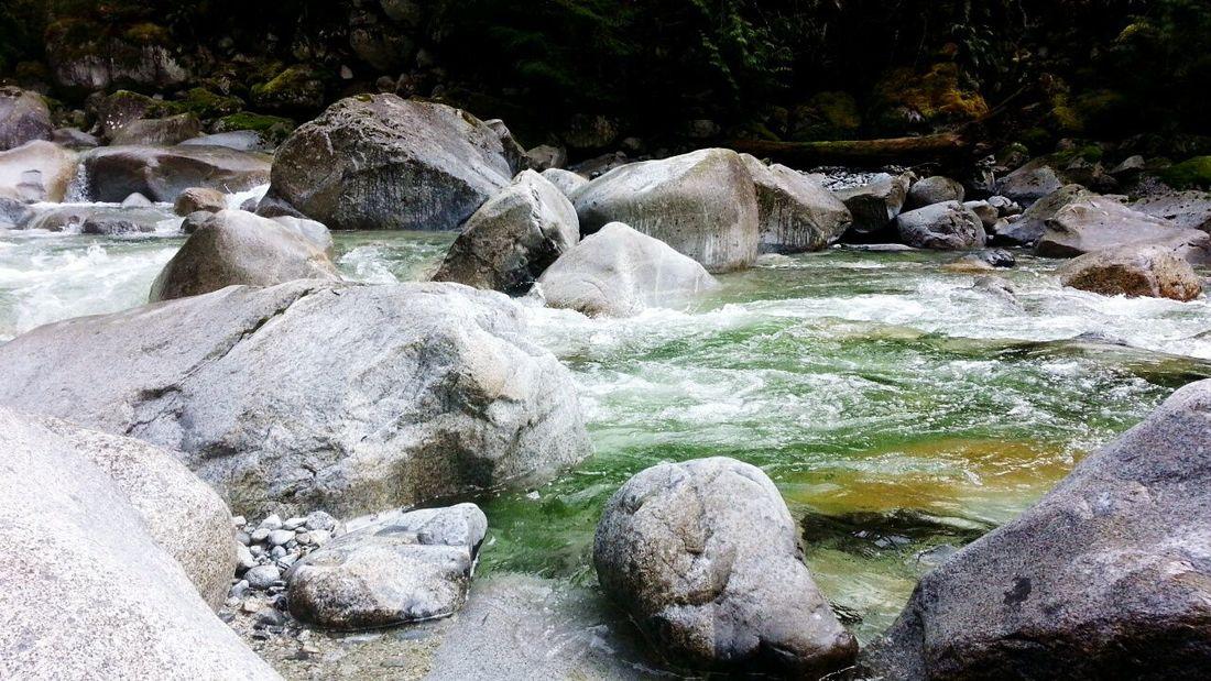 River Rocks Vancouver Cascade Water Spring Canada Forest Pine Trees