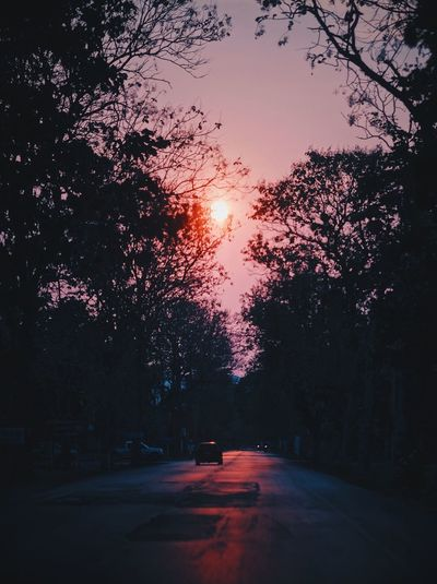 Street amidst trees against sky during sunset