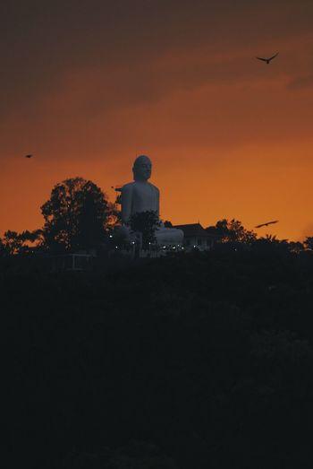 Big Buddha statue Sri Lanka Kandy Lake Big Buddha Statue, Kandy Astronomy Sunset Men Silhouette Desert Sky