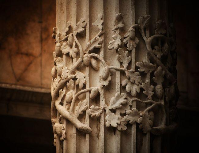 Pillars of life