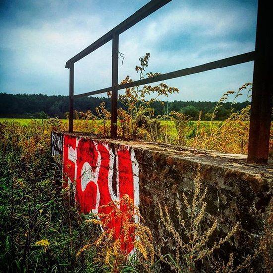 SpazierLauf Running Wiese  Herbst Graffiti Rail Wolken Clouds Enlight Strava Applewatch Laufen