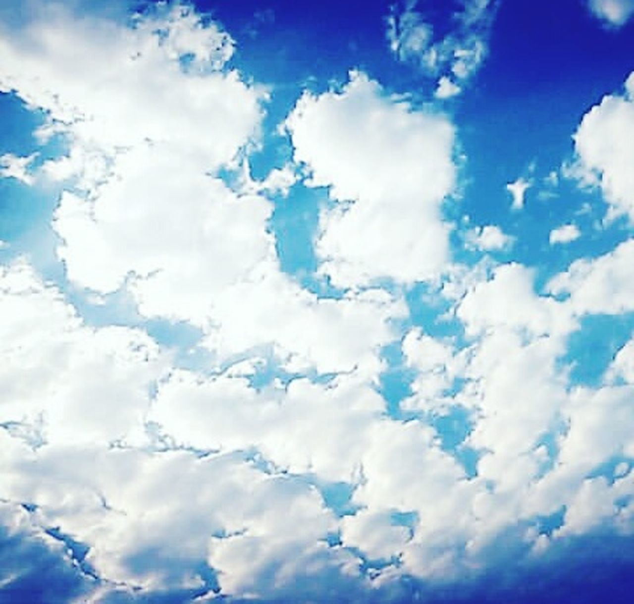 cloud - sky, blue, backgrounds, cloudscape, sky, weather, dramatic sky, summer, nature, white color, vibrant color, scenics, textured effect, textured, beauty in nature, brightly lit, sunlight, abstract, sky only, multi colored, no people, outdoors, day