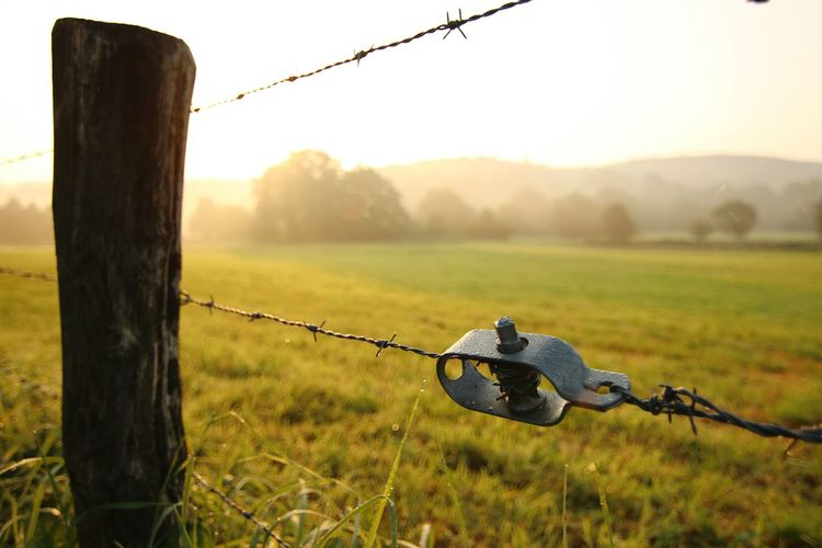 Protection Security Barbed Wire Grass Safety No People Outdoors Nature Field Sunset Rural Scene Day Beauty In Nature Close-up The Week On EyeEm