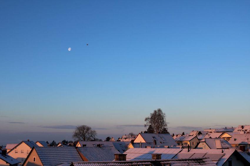 *Blauer Winterhimmel* Nach der Schneeflocken Flimmergewimmel überm Panzer der Erde, silbrig weiß, wölbt sich ein schimmernder, blankblauer Himmel, seligfern allem Schnee, allem Eis. Taugt denn so farbenfreudige Bläue zu eines Wintertags frostigem Grau - fragen die Menschen sich immer aufs Neue - gab es denn je solch ein Winterblau? Ist's nicht ein Blau, das der Sommer vergessen? Ist's vielleicht gar - sie atmen ganz zag, denn schon die Frage dünkt sie vermessen - ist's gar ein vorschneller Frühlingstag? (Hugo Salus, 1866 - 1929) Hallo ihr Lieben, war heute nicht ein herrlich sonniger Tag? Schade, dass das Wetter nicht mit meiner Arbeitszeit kompatibel war und ich ins Hamsterrad musste. Aber den Blick aus dem Fenster hab ich vorher noch schnell mitgenommen! Beauty In Nature Blue Sky Bright Clear Sky Flying Bird From My Window Good Morning✌♥ Ladyphotographerofthemonth Life's Simple Pleasures... Moon Moon Shots My Hometown My Year My View Nature Poetry In Pictures Snow Covered Snow ❄ Sunny Day Untamed Heart View From The Window... Winter Morning Winter Sun Wintertime Winterwonderland