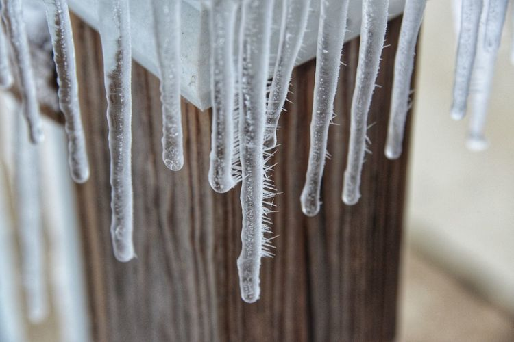 Close-up of icicles hanging on wood