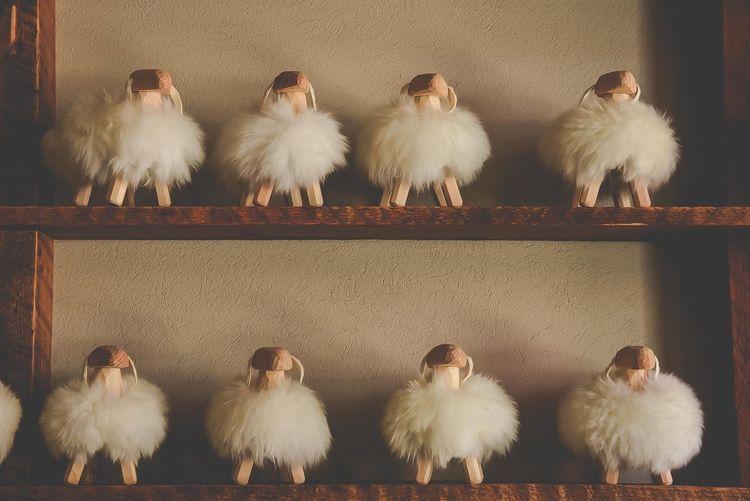 Sheep on shelf