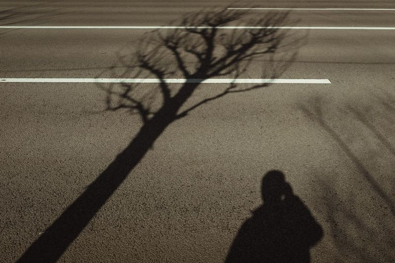 Shadow Focus On Shadow Sunlight High Angle View Real People Nature Unrecognizable Person Road Day Street Outdoors