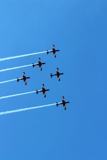 Six Roulettes Order Perfect Aircraft Low Level Flying Manoeuvre Display Air Force Aerobatics Planes Flight Lake Macquarie Australia Vintage Plane Vintage Formation Flying Formation Blue Airshow Flying Low Angle View Speed Airplane Vapor Trail Clear Sky Teamwork Arrangement Performance Sky