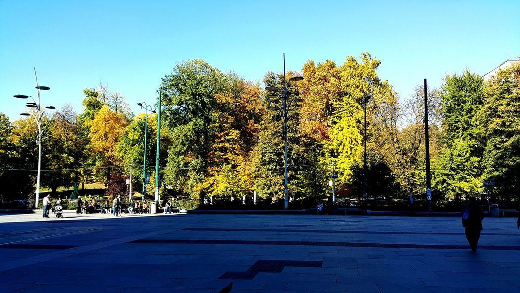 Autumn Autumn Colors Square Sarajevo Saraybosna Bosnahersek Sonbahargüneşi