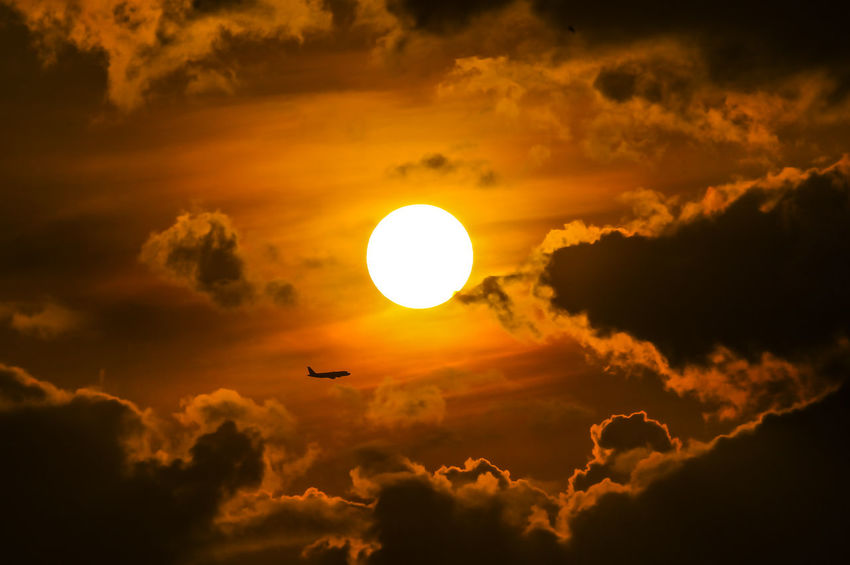 Silhouette. Selective focus. The beauty of the universe with panoramic full sun and clouds with a plane flying through the area Animal Themes Beauty In Nature Cloud - Sky Day Low Angle View Nature No People Orange Color Outdoors Scenics Silhouette Sky Sun Sunlight Sunset Yellow