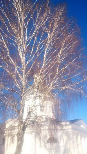 Церковь в селе Телебукино. небо Church Architecture Церковь архитектура деревья пейзаж Tree Clear Sky Bare Tree Blue Sky