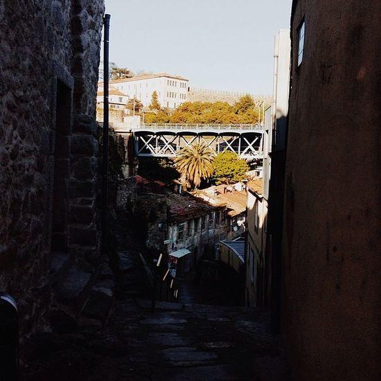 Vscocam Pontedluisi Porto Portugal igersporto ironbridge architecture palmtree travel
