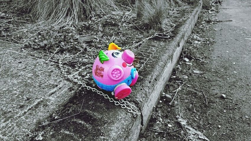 It's not easy being a pink pig in a black and white world Black & White Toy Pig Chained Up Shackled Pet Pink Color Splash Portlandia Here Belongs To Me My Neighborhood Ball And Chain Horse Tie-up Curb First Eyeem Photo Pet Portraits