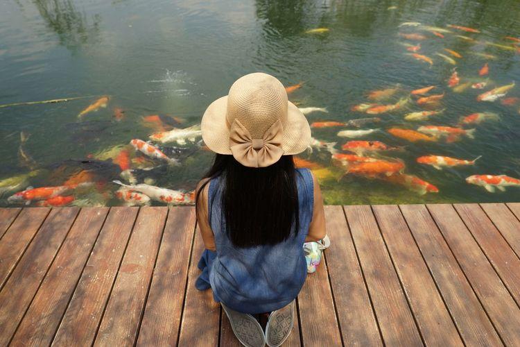 Rear view of woman looking at koi carps in lake