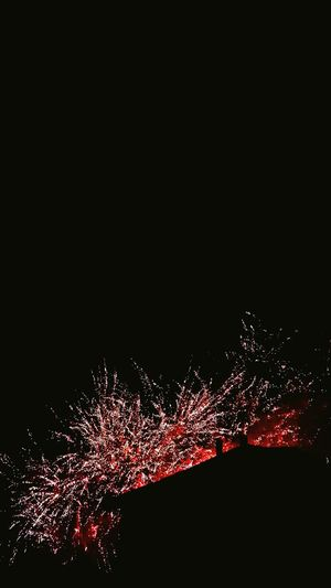 Hanging Out Taking Photos Check This Out Relaxing Hi! Firstaugust Enjoying Life Nightphotography Beautiful Hello World Summer Hollidays Fireworks