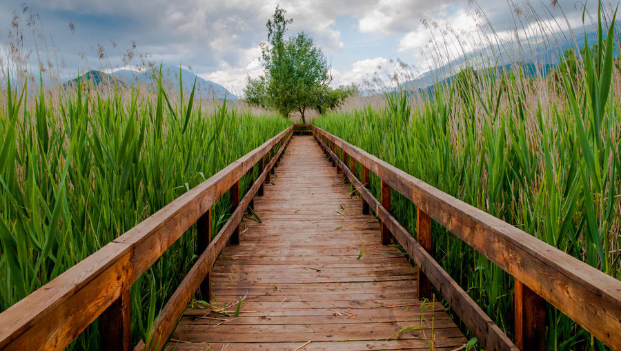 Bridge - Man Made Structure Cloud - Sky Day Footbridge Nature No People Outdoors Sky The Way Forward Tree Landscape Wood Paneling Landscapes