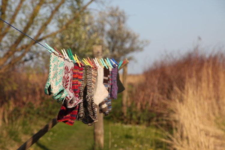 Close-up of socks hanging on clothesline