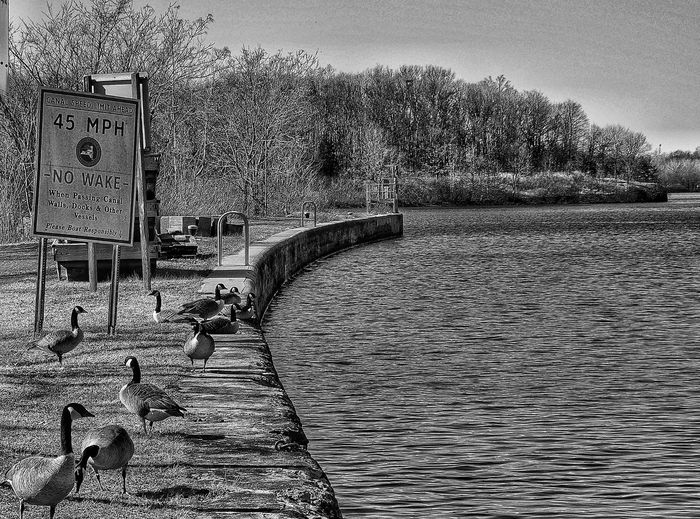 Monochrome Photography Monochrome Diminishing Perspective Taking Photos Monochrome_life Shadow Tranquility No People Water Day Blackandwhite Tranquil Scene Nature Nature Outdoors Mohawk River