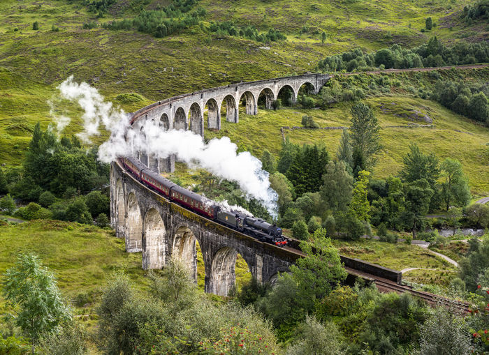 Steam Locomotive cross the Glenfinnan viaduct bridge Glenfinnan Glenfinnan Viaduct Steam Train Steam Locomotive Transportation Architecture Bridge Railway Bridge Rail Transportation Day Tree Scotland Harrypotter Hogwarts Train Nature Viaduct Outdoors No People Motion United Kingdom