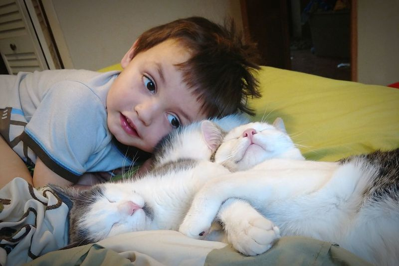These are the moments to live for.. He loves snuggling with his fur babies. Child Smiling Children Children Photography Boy Little Boy Toddler  Snuggling Cuddles Kitten Heartwarming Adorable EyeEm Selects Lying Down Childhood Smiling Child Indoors  Cute Pets Happiness Bedroom Close-up