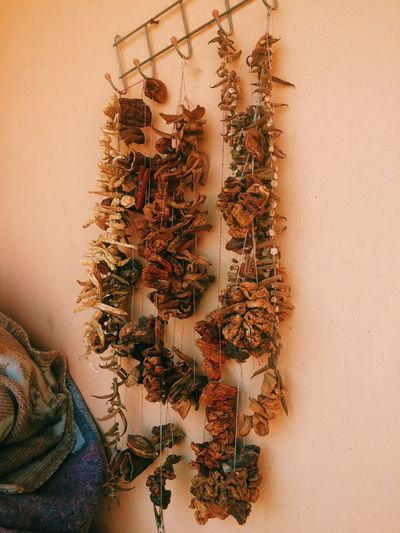 Indoors  Wall - Building Feature Plant No People Nature Celebration High Angle View Food And Drink Close-up