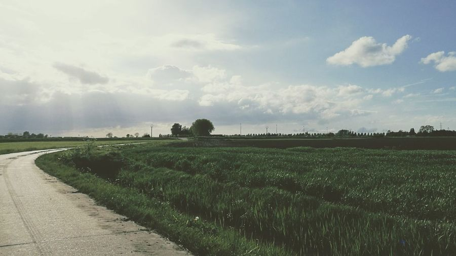 Thisisbelgium HuaweiP9 Landscape_lovers My Perspective Outdoors