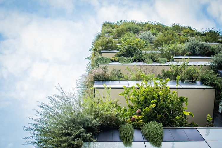 Tree Green Color No People Sky Plant Beauty In Nature Architecture Ornamental Garden Skygarden Skygardens Garden Architecture Buildings Skyhouse Milan Milano Italy Bosco Verticale Vertical Gardens
