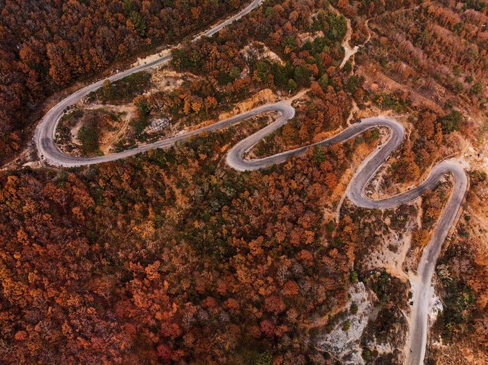 Drone  Dji Road Trees Woods Autumn colors Autumn Communication No People Day High Angle View Outdoors