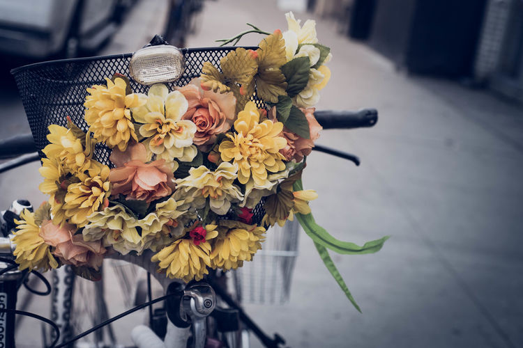 Close-Up Of Flowers On Bicycle